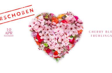 180302_1140x584_spring_cherryblossom-1