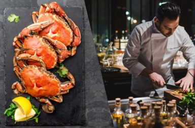 webcover_1140x584_cihan_crab